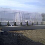 Двухсекционная арочная теплица с универсальными креплениями плёнки фото