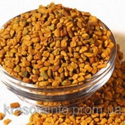 Пажитник (семена шамбалы)100 гр. фото