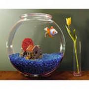 Аксессуары аквариумные фото
