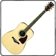 Гитара акустические фото