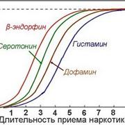 Определение продолжительности приема наркотиков фото