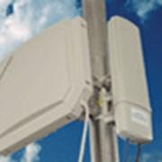 Система беспроводной широкополосной связи Motorola Canopy. 900 МГц. Для интернет-провайдеров фото