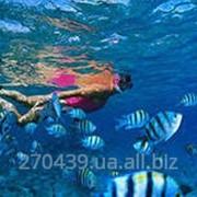 Туры с отдыхом на море фото