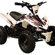 Детский электроквадроцикл MOTAX 800W фото