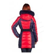Одежда зимняя женская фото