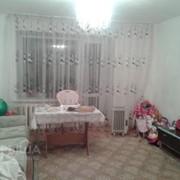 1-комнатная квартира, Косщи фото