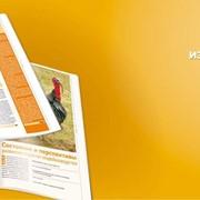 Периодическое издание журнал ЕФЕКТИВНЕ ПТАХІВНИЦТВО фото