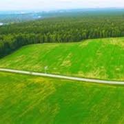 Земля под Киевом фото