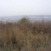 Продажа земли под Киевом фото