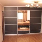 Шкаф-купе и встроенная мебель под заказ  фото