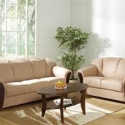 Мягкая мебель на заказ, М'які меблі під замовлення фото