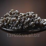 Черная икра натуральная без консервантов фото
