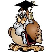 Изготовление на заказ курсовых, контрольных работ, дипломов, диссертаций, рефератов, задач по юриспруденции (право) фото