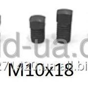 Болт винт для клиньев рейсмуса фуганка 10*18 мм 10х18 Б1018 фото
