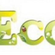 Услуги в сфере экологического консалтинга фото