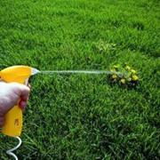 Обработка участка от сорняков химическим способом фото