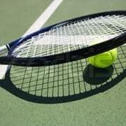 Сетки для большого тенниса фото