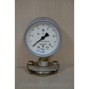 Манометр молочный МТП-100/1-ВУМ фото