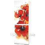 Фасад для холодильников Snaige Артикул: 021 фото