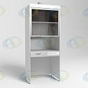 Шкаф вытяжной ШВ-01-МСК без тумб, столешница нерж. сталь (эконом) фото