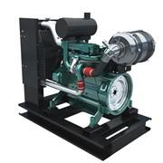 Двигатель Weichai WP2.1D18E2 фото