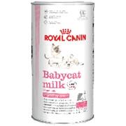 Royal Canin 300г Babycat Milk Заменитель кошачьего молока для котят с рождения до отъема (до 2 мес) фото