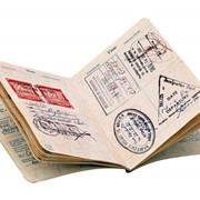Немецкая рабочая бизнес мульти виза (Шенген) фото