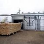 Услуги по просушке древесины фото
