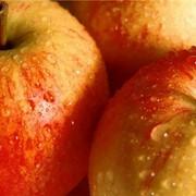 Яблоки протёртые с сахаром фото