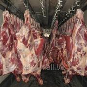 Мясо говядина (промзабой) КХ Караш фото