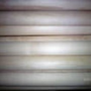 Черенки деревянные садовые фото