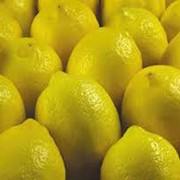 Лимоны Турецкие фото