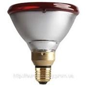 Лампа для обогрева животных фото