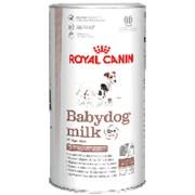 Royal Canin 400г Babydog milk Заменитель молока для щенков с рождения до отъема (до 3 недель) фото