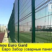 PANOU GARD BORDURAT(eurogard).Сварные панели. фото