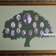 Фоторамка Семейное древо фото