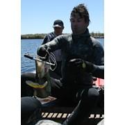 Подводная охота фото