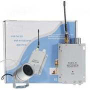 Беспроводная камера наблюдения 1.2GHz с системой ночного видения для наружного использования (PAL) фото