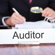 Аудит финансовой отчетности по стандартам РФ фото