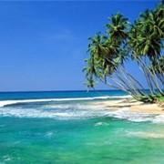 Отдых на Шри-Ланке фото