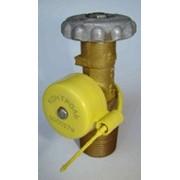 Запорно-пломбировочное устройство для вентиля газового баллона фото