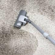 Услуги по химической чистке напольных покрытий с ворсом фото