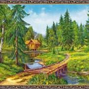 Гобеленовая картина 60х80 GS74 фото