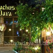 Ресторан Bachus Dava фото