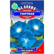 Семена Ипомея голубая Фиолетовый фото
