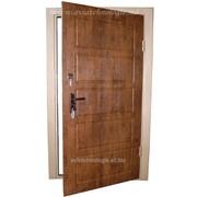 Металлические двери входные фото