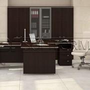 Мебель для кабинета руководителя Вельс фото