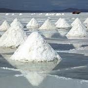 Добыча, переработка и реализация поваренной соли в Казахстане месторождение ЖаксыТуз фото