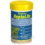Корм концентрат для рептилий Tetrafauna Repto Life фото