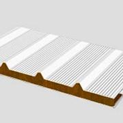 Кровельные сэндвич-панели, тип Микроволна фото